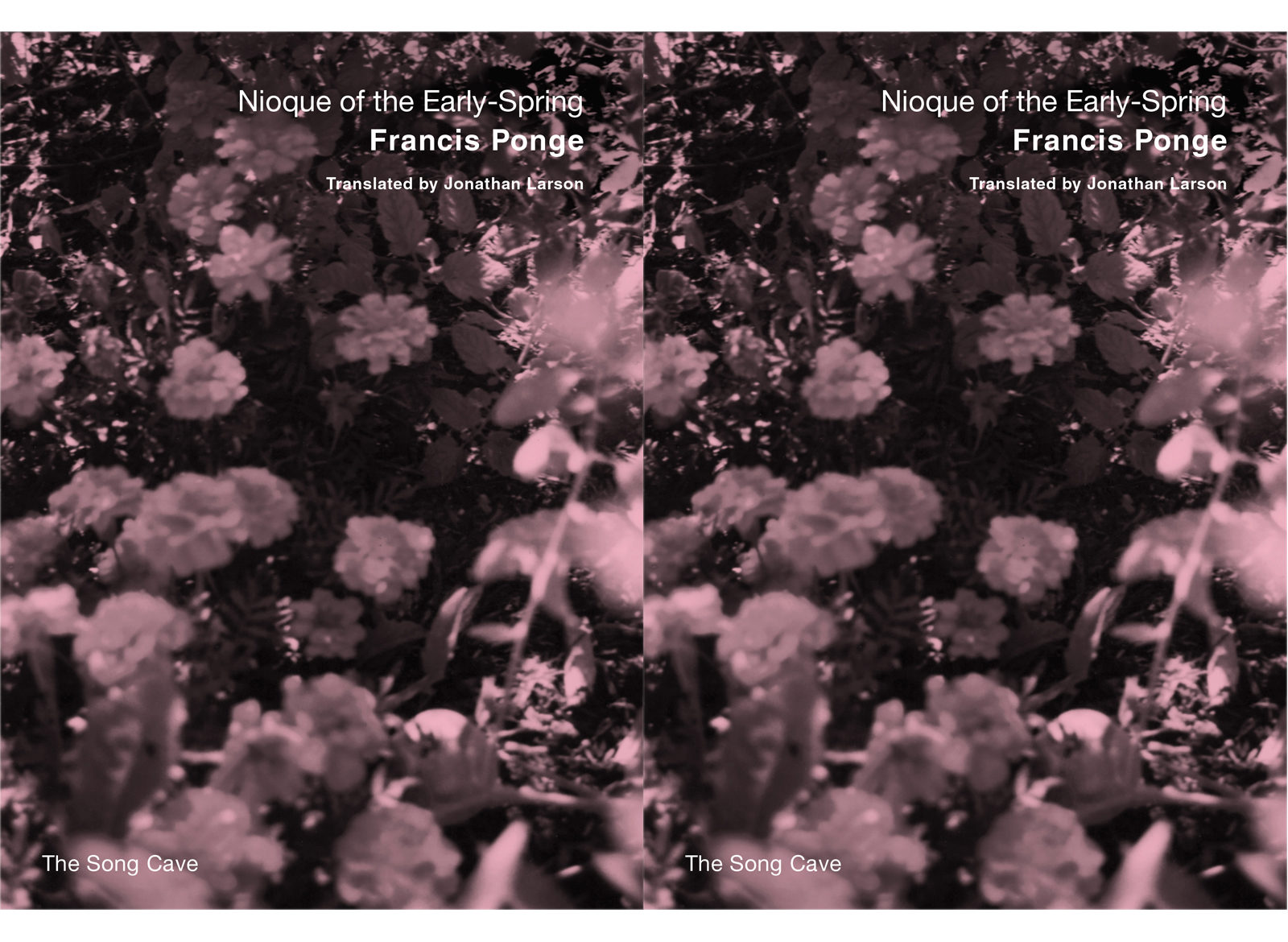 Jonathan Larson On His Translation Of The Poetry Of Francis Ponge